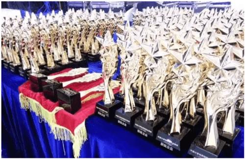 祝贺华硕厨电被评为2017中国小家电百强企业