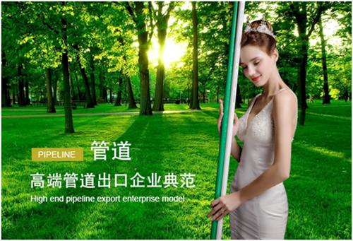 """东生管材的""""中国十大管材管件品牌""""荣耀之路"""