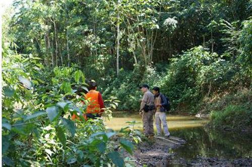大自然家居携手二更打造纪录片《寻秘亚马逊》